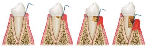 Dr. Serrano | Dr. Covino | Dentists Wakefield MA